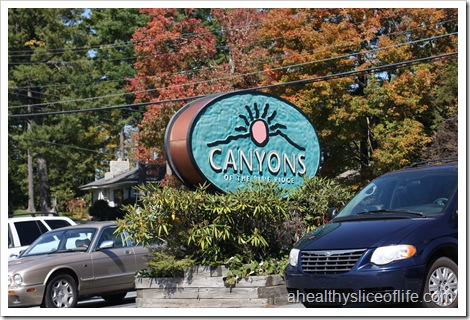 Canyons Restaurant- Blowing Rock NC- sign
