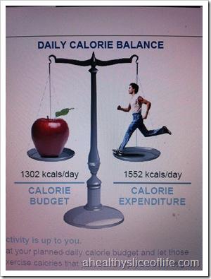 bodygem calorie balance