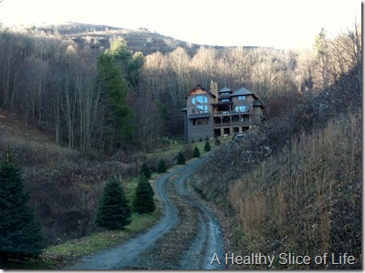 Boone Cabin Rental