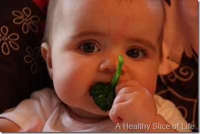 baby led solids broccoli