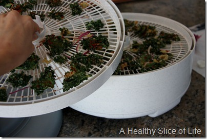 Paleo Eating- dehydrated kale chips