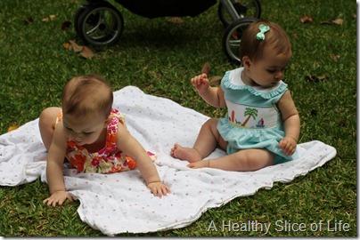Savannah - babies in grass
