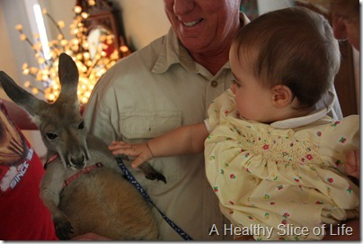 Friday randoms- Zootastic- Hailey and the kangaroo