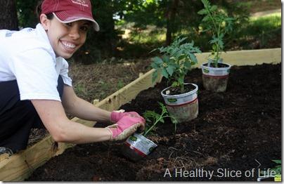 backyard garden- planting