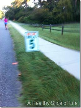 Davidson Run for the Green 10k 2012- mile 5
