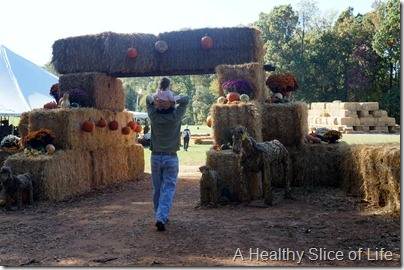 Lazy 5 Ranch- Mooresville- fall fun