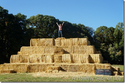 Lazy 5 Ranch- Mooresville- straw castle