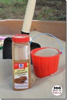 cinnamon in sandbox