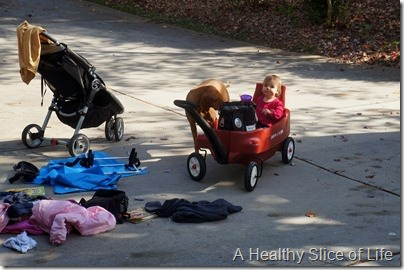 fall wagon walks