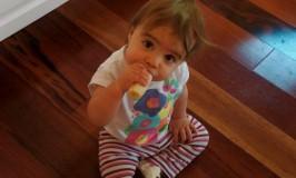 Munchkin Meals: 13 Months Old