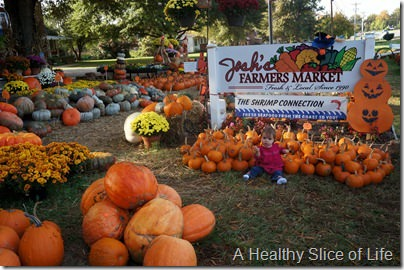 Josh's Farmers Market- fall