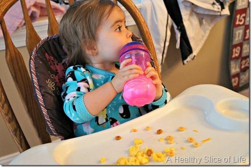 munchkin meals- 15 months- milk
