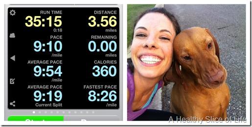 perfect day run
