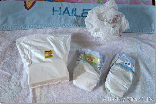 Toddler Pool and Beach Bag- regular diapers