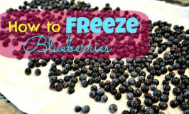 How to Properly Freeze Fresh Blueberries