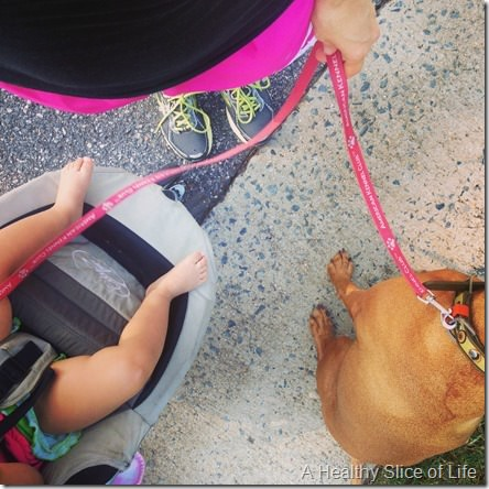 exercise add- outside stroller wogging