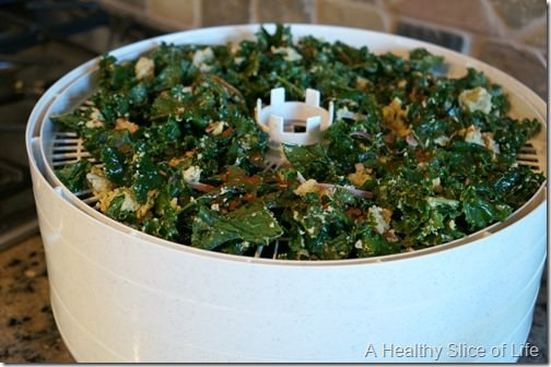 cool ranch kale chips dehydrating