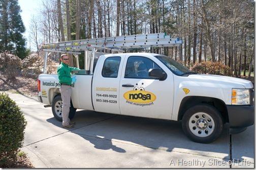 noosa pest management- natural botanical service- 1