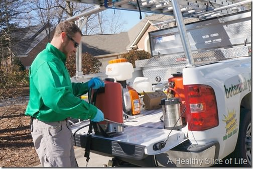 noosa pest management- natural botanical service- 4