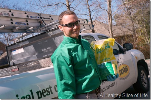 noosa pest management- natural botanical service- 6