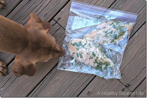 chicken jerky for dogs marinate
