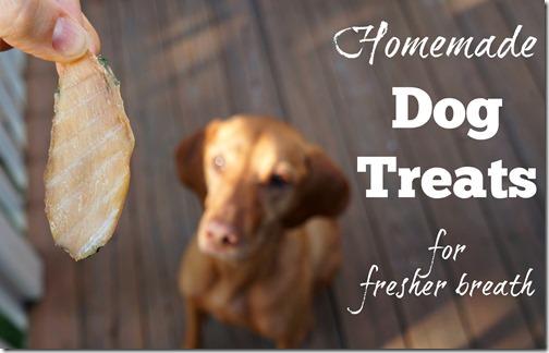 homemade dog treats for fresher breath