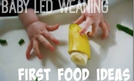 Baby Led Weaning First Food Ideas