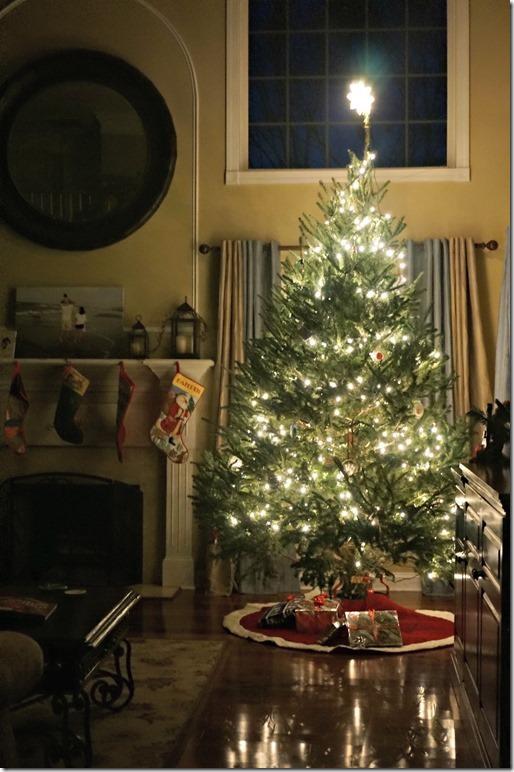 dixon-christmas-tree-2014