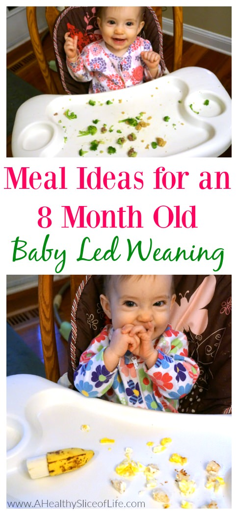 Meals For An 8 Month Old Baby Led Weaning