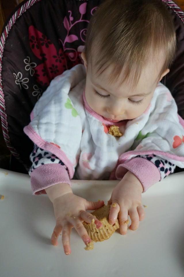 baby led weaning muffins