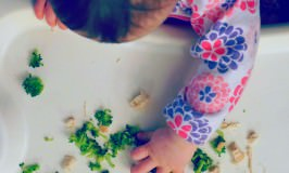 10 Meal Ideas for Baby Led Weaning
