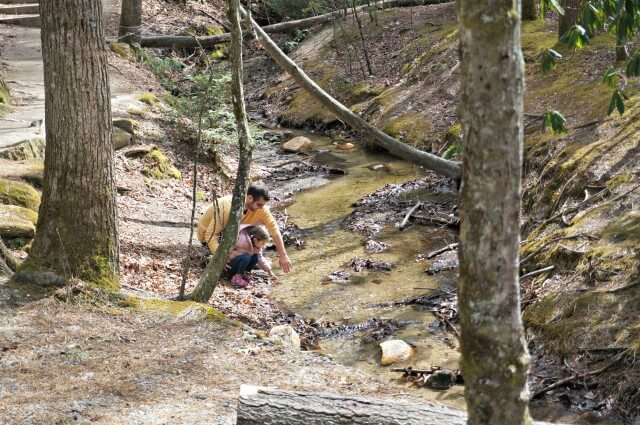 stone mountain state park north carolina- touching stream