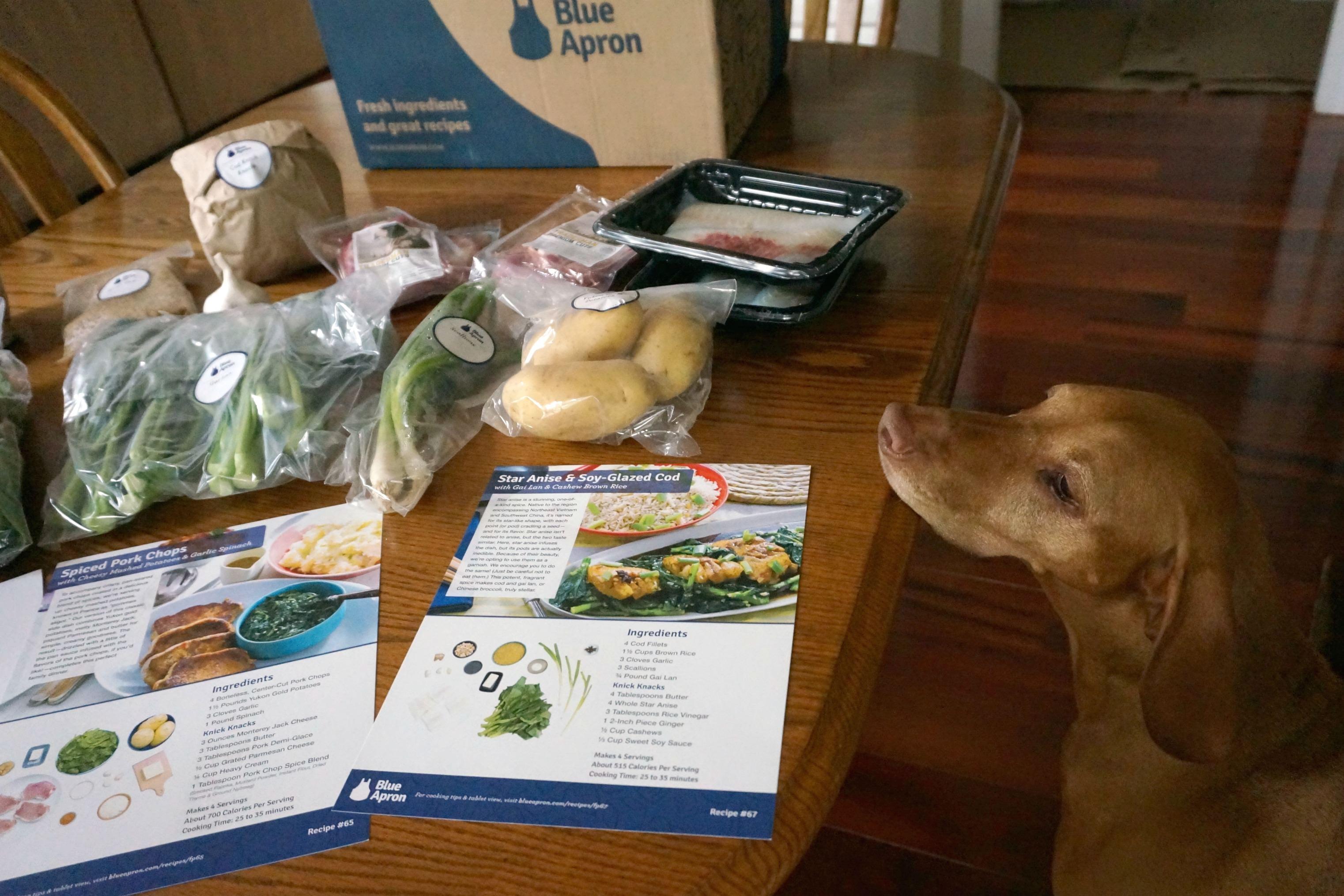 Blue apron omaha - Blue Apron Dog Lover