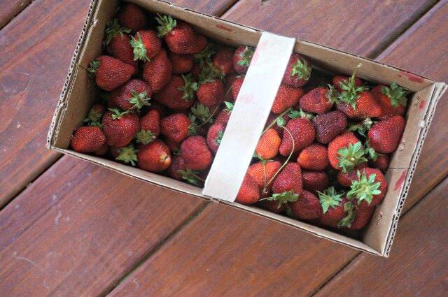 bread machine strawberry jam- strawberries
