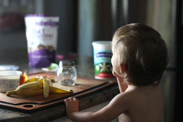 yogurt snatcher