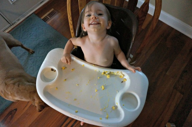 how much should a 14 month old eat- after mess