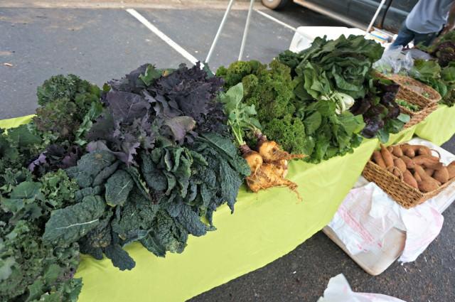 davidson farmers market organic