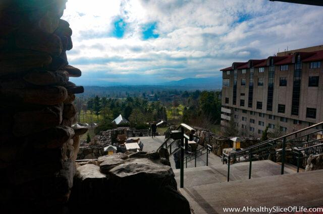 Asheville (7 of 15)