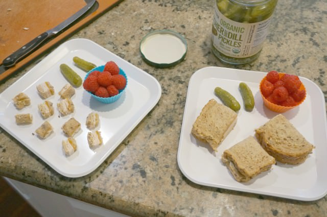 meal ideas for toddlers and preschoolers- 5