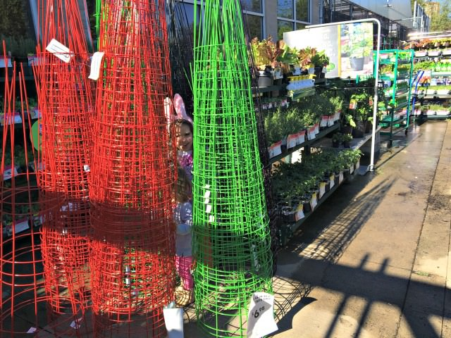 garden shopping at lowes