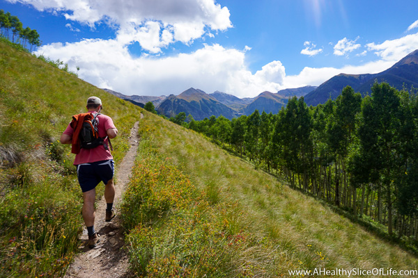 Telluride Colorado - summer -Jud Weibe Trail