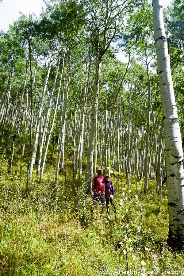 telluride-colorado-guide-51-of-53