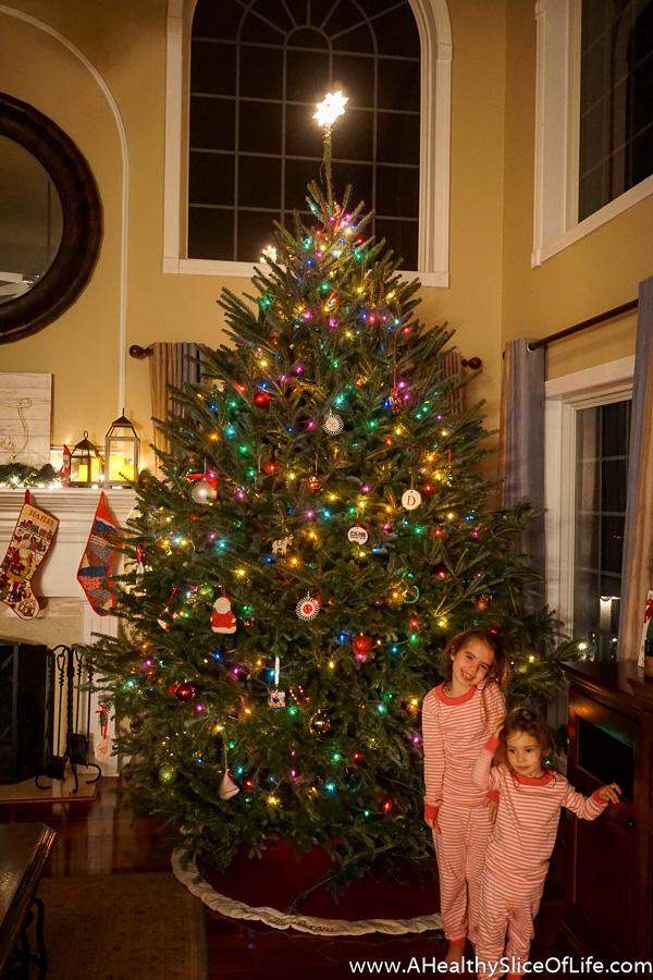christmas-decor-19-of-19