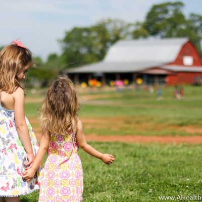 The Very Best Time To Go Strawberry Picking
