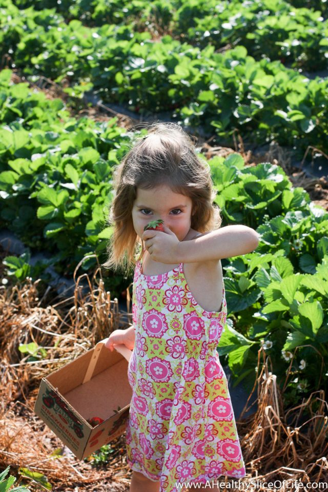 toddler strawberry