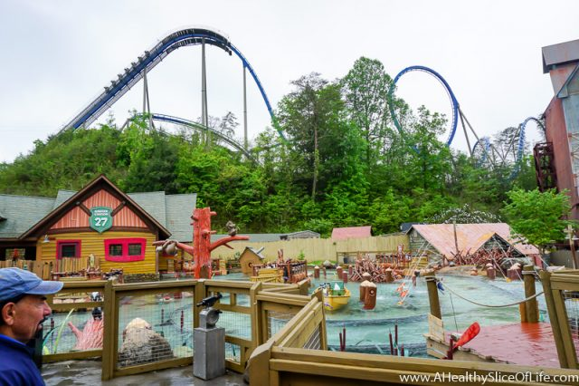 dollywood bald eagle coaster