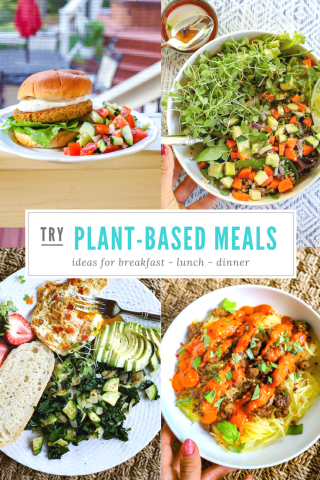 plant-based meal ideas for breakfast, lunch, and dinner
